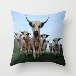 High Park Cattle Throw Pillow