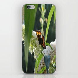Small Tortoiseshell Butterfly iPhone Skin