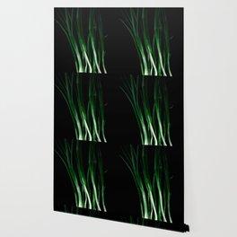 Green onion Wallpaper