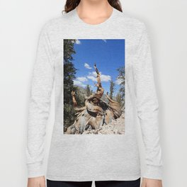 Ancient bristlecone tree Long Sleeve T-shirt