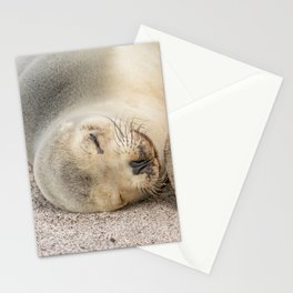 Sleeping sea lion on the beach Stationery Cards