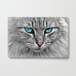 Blue Cat Eyes You Can Never Forget Metal Print