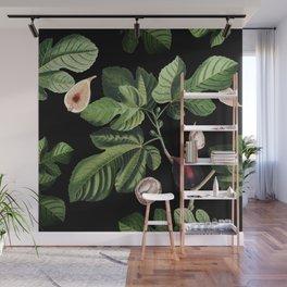 Figs Black Wall Mural