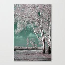 Alien Lanscape Canvas Print
