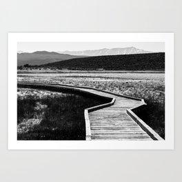 Path to Peace 2 Art Print