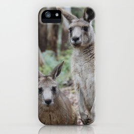 Roos iPhone Case