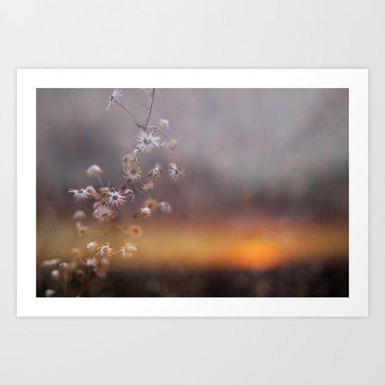 """Stars"" Art Print"