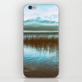 Blue Numbness iPhone Skin