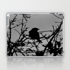 Silhouette Bird.  Laptop & iPad Skin