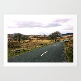 Road to ... Art Print