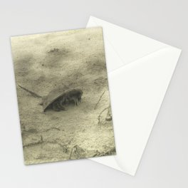 Crab Stationery Cards