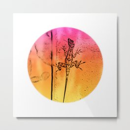 Abstract colors in everywhere Metal Print