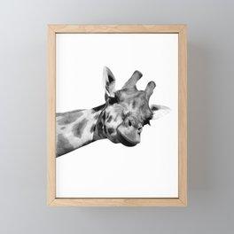 Black and white giraffe Framed Mini Art Print