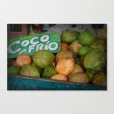 CocoFrio Canvas Print