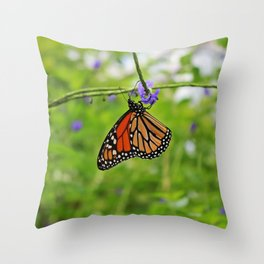 Trail of Consolation Throw Pillow