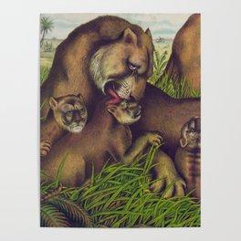 Vintage Illustration of a Lion Family (1874) Poster