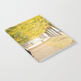Walking in Autumn Notebook