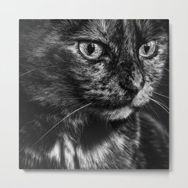 Glamour Kitty Metal Print