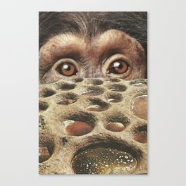 We are monkeys Canvas Print