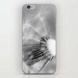 Dandelion Whispers iPhone Skin