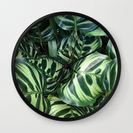 CONSERVATORY XII Wall Clock