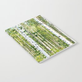 Sunny Day in Beautiful Birch Grove Landscape #decor #society6 #buyart Notebook