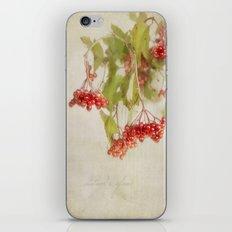 autumn's glow iPhone & iPod Skin