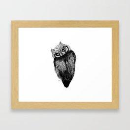 Scops Owl  Framed Art Print