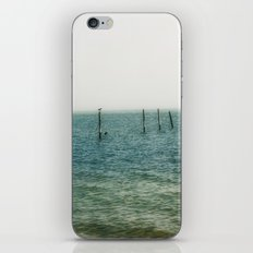 Ombre Sea iPhone & iPod Skin