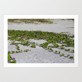 Railroad Vines on Boca VI Art Print