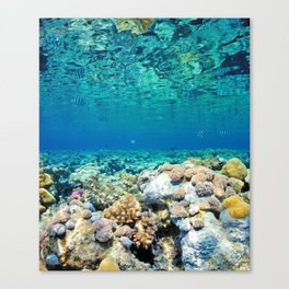 The World Between Canvas Print