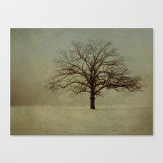 A Garden of Simples Canvas Print