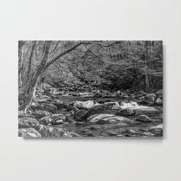 Spring Stream BW Metal Print