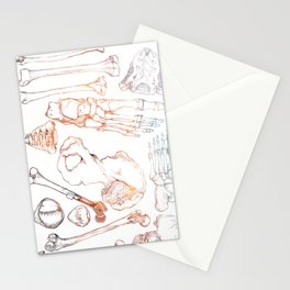 Lower Extremity Skeleton Stationery Cards
