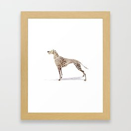 dalmatian Framed Art Print