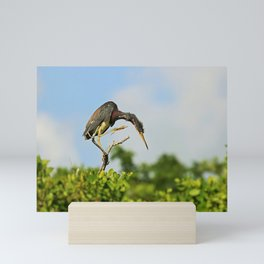 Balancing on a Branch Mini Art Print