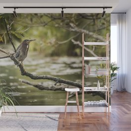 September Green Heron Wall Mural