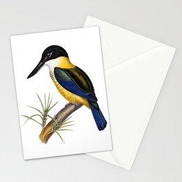 New Zealand Kingfisher Stationery Cards