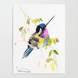 Little bird children illustration hummingbird Poster