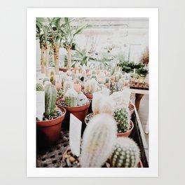 Cacti at the Flower Shop Art Print