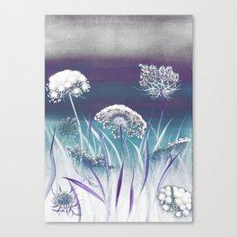 Wild Carrot - blue Canvas Print
