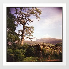 Tree and Stile Art Print