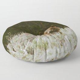 Bush Bear Floor Pillow