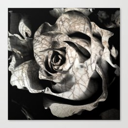 Rose forming from light and shadows Canvas Print
