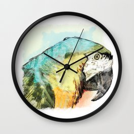 Cocorito Wall Clock