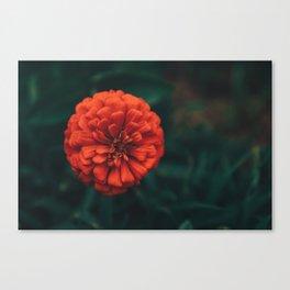 Divine Floral Canvas Print
