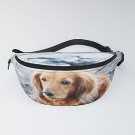 Red longhaired dachshund on waterfront cliff Fanny Pack