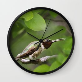 Hummingbird Hiding Wall Clock