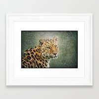 leopard Framed Art Prints featuring Leopard by Pauline Fowler ( Polly470 )