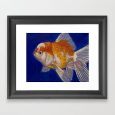 Oranda Goldfish I Framed Art Print